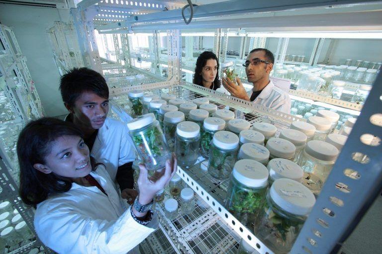 Leki biologiczne nie do zamiany