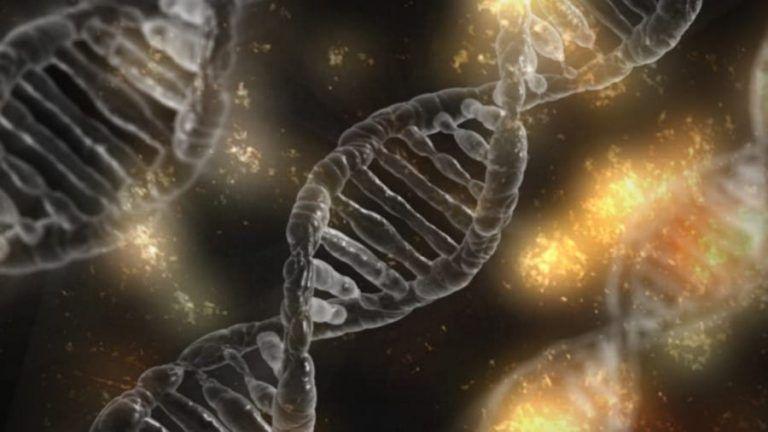 Google enters life sciences