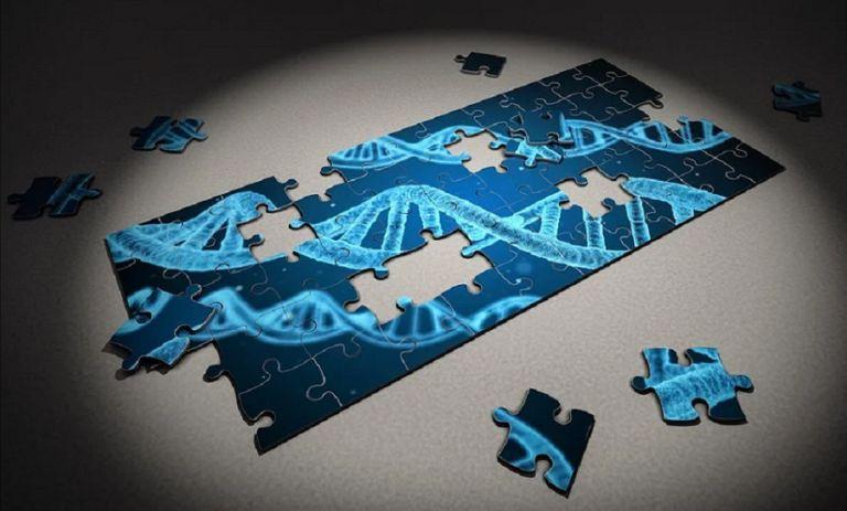 Pfizer i BioNTech: pozytywne wyniki badań szczepionki na COVID-19